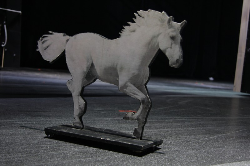 photo-accessoires-theatre-robin-cheval