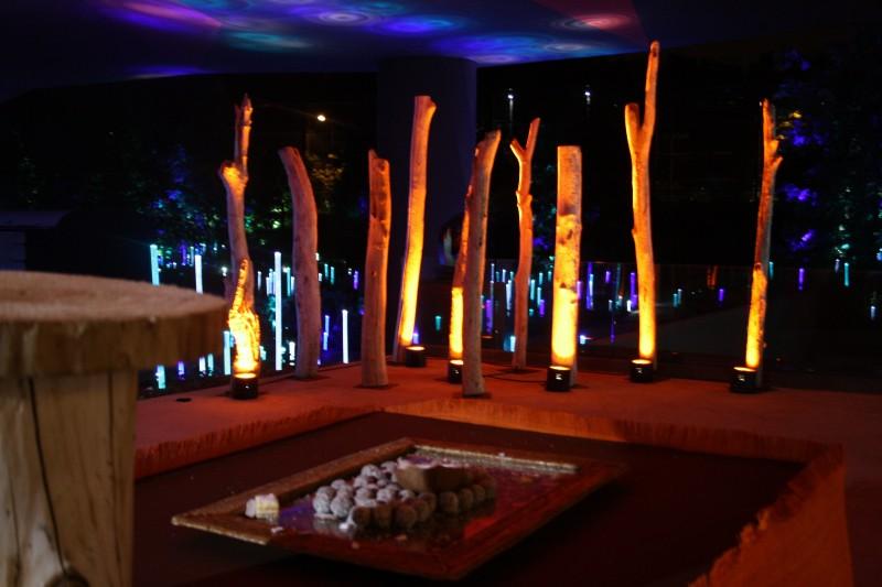 photo Scénographie Musée du Quai Branly - Les Dogons arbre
